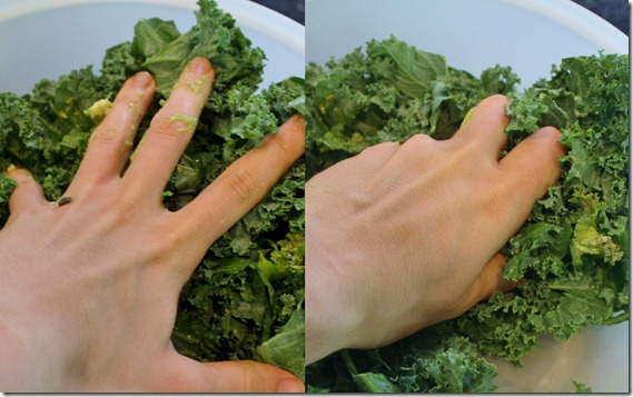 how-to-massage-kale-technique