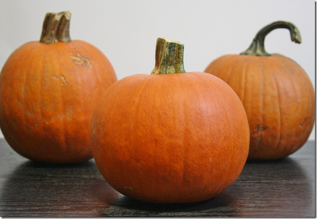 how-to-make-pumpkin-puree-pumpkins