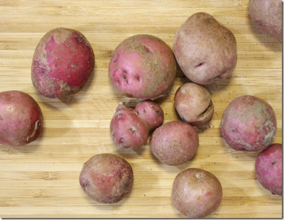 the-best-red-potatoes-raw