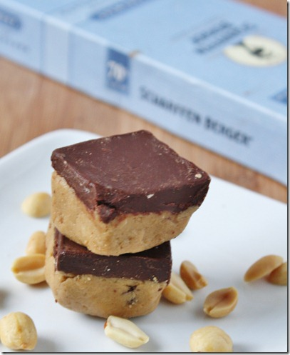 Graham-Cracker-Peanut-Butter-Bars-With-Dark-Chocolate-Ganache-beauty-shot