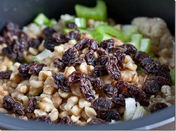 the-amateur-gourmet's-quinoa-converter-raisins-walnuts