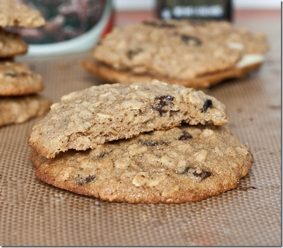 gluten-free-oatmeal-raisin-cookies-close-up
