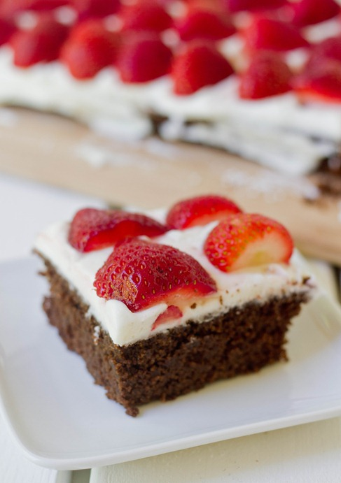 Gluten-Free Chocolate Flag Cake Slice