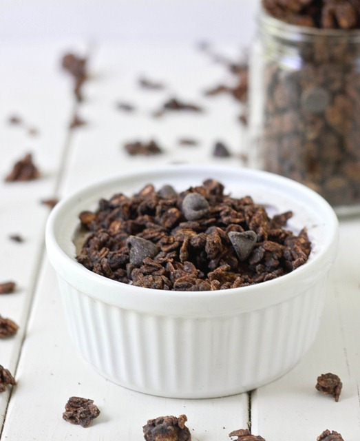 Double Chocolate Granola Serving